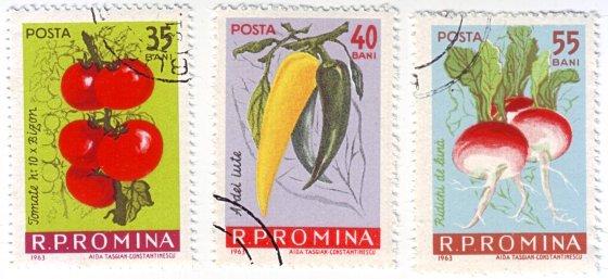 Romanian Vegetables by Aida Tasgian-Constantinescu