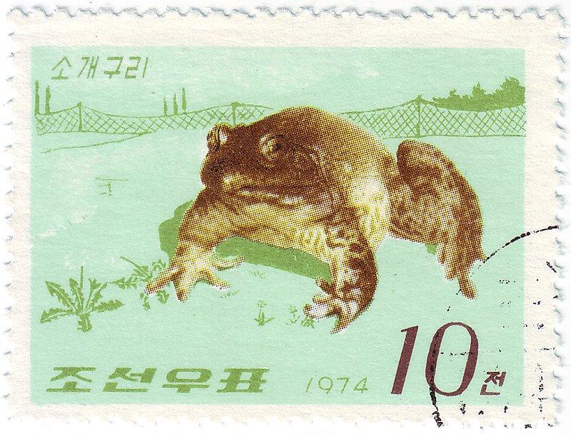 Toad on North Korean 1974 postage stamp
